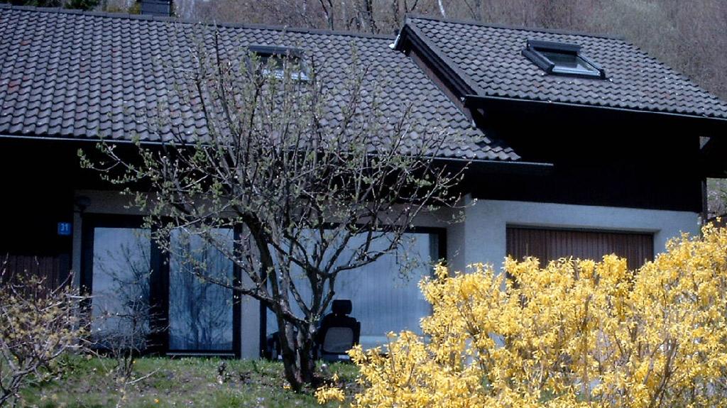 Ferienhaus Rhöndistel - Frühling